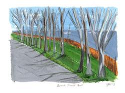 Beach Trail Fall, Ontario