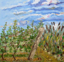 Grape Vines And Reeds