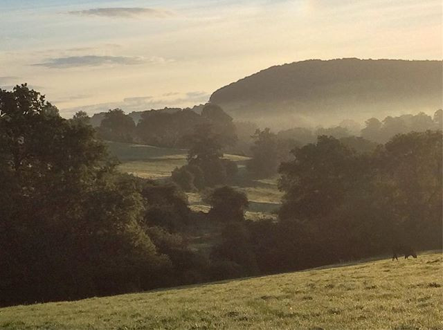 Mist rising in the Painswick valley