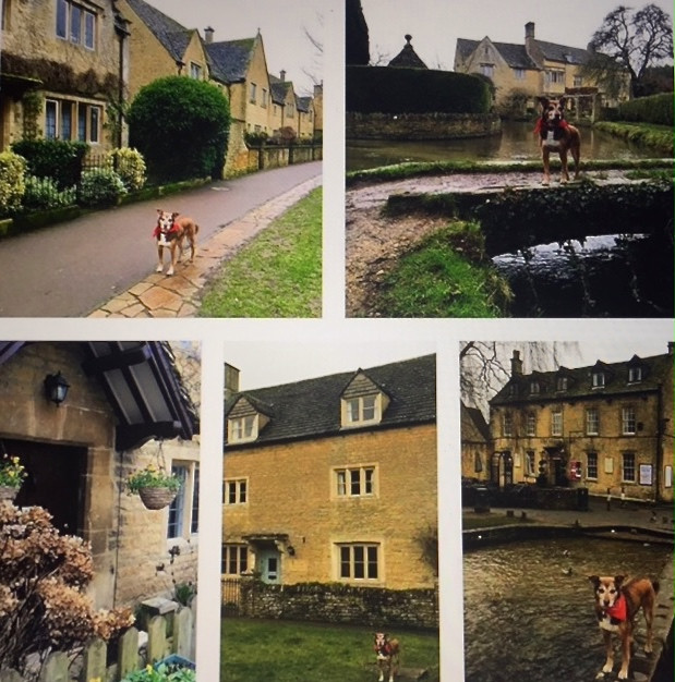 Miko on tour in Bourton-on-the-Water