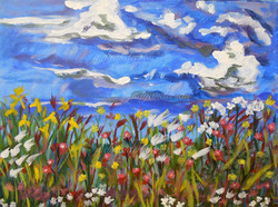 Shetland Wildflowers 2
