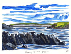 Looking towards Spiggie, Shetland