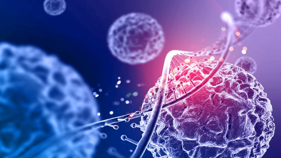 Covid-Rezzon -Antibody - BioXstem.png