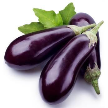 Eggplant Italiano