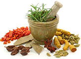 spices with mortor and pestle.2 300dpi.j