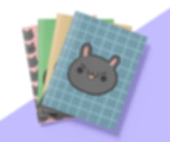 Soosh notebook Set.jpg
