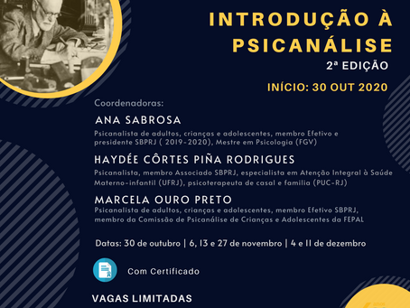 Curso Introdução à Psicanálise - 2ª edição