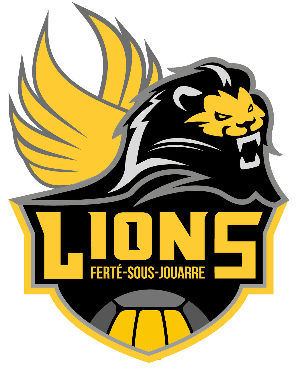 logo-ferte-sous-jouarre-volley