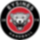 logo__pueywk.png