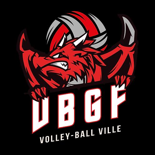 LOGO VOLLEY-BALL DRAGON
