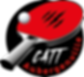 logo-catt-transparent.png
