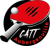 logo-catt-transparent.png