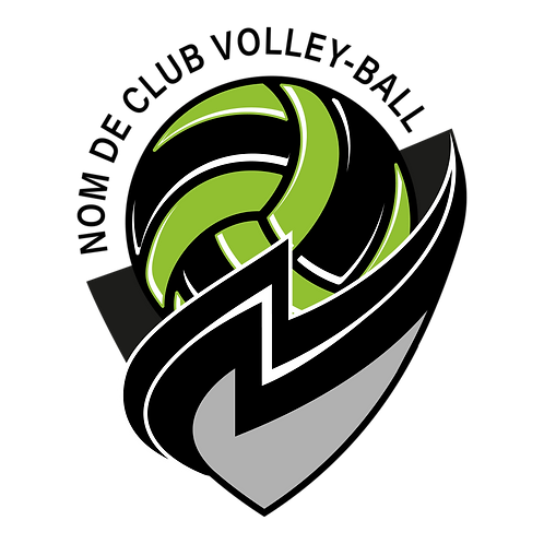 LOGO VOLLEY-BALL STORM