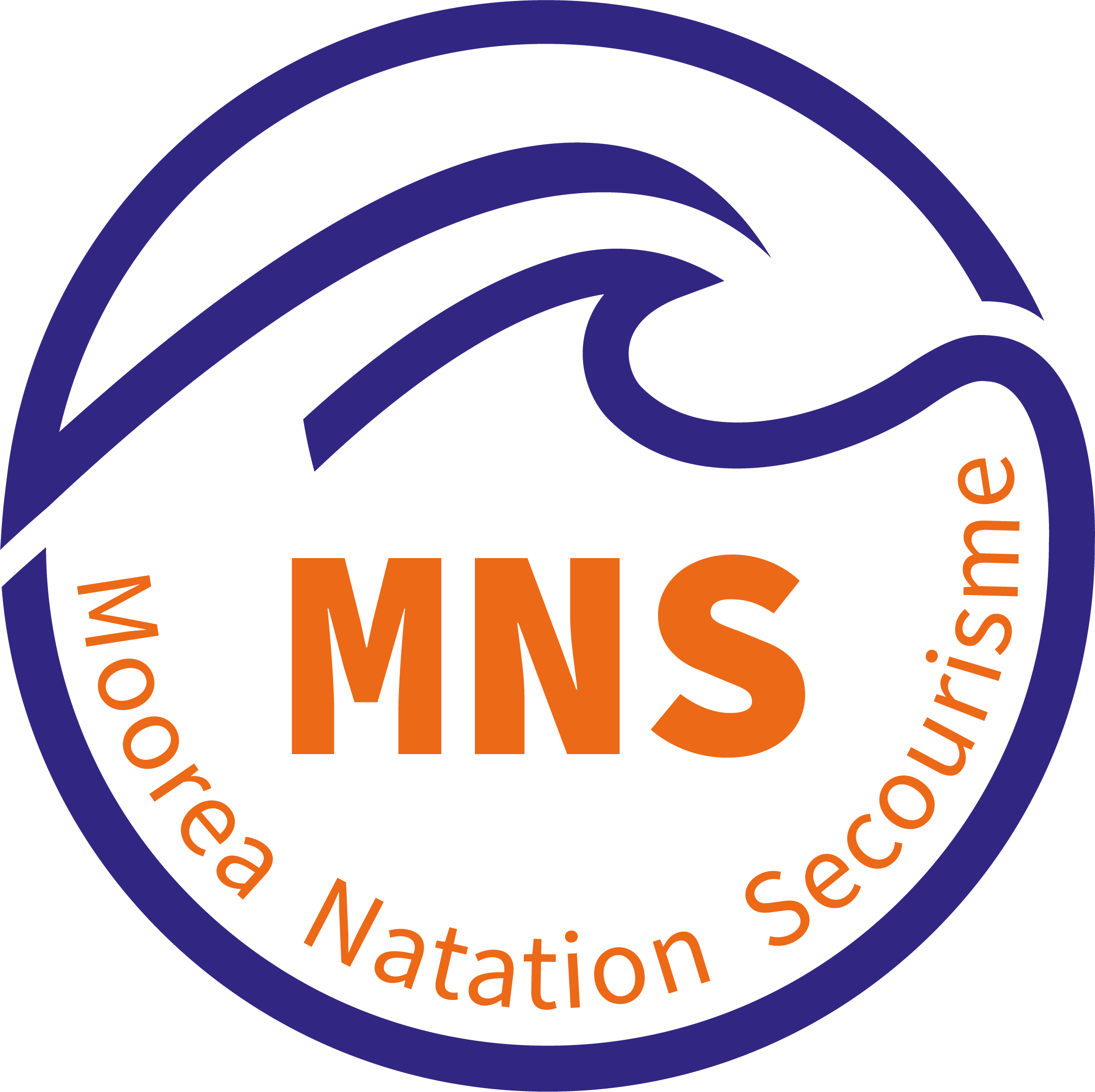 logo-mns-transparent