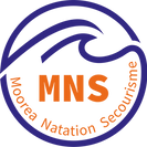 logo-mns-transparent.png