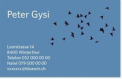 Visitenkarten Peter Gysi
