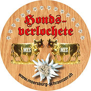 Abziehbild Kleber Guggenmusik Winterthur