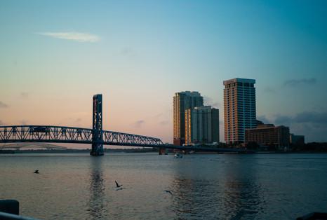 Birds Boat Bridge