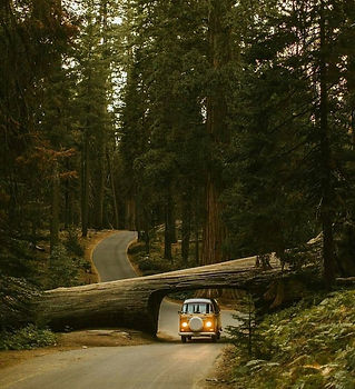 living-in-van-life-travel-photography-56