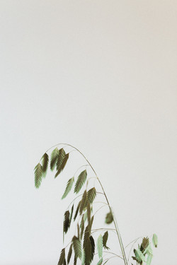 bubblerock_AteliesdeMadameC_AtelierBlanc_0020