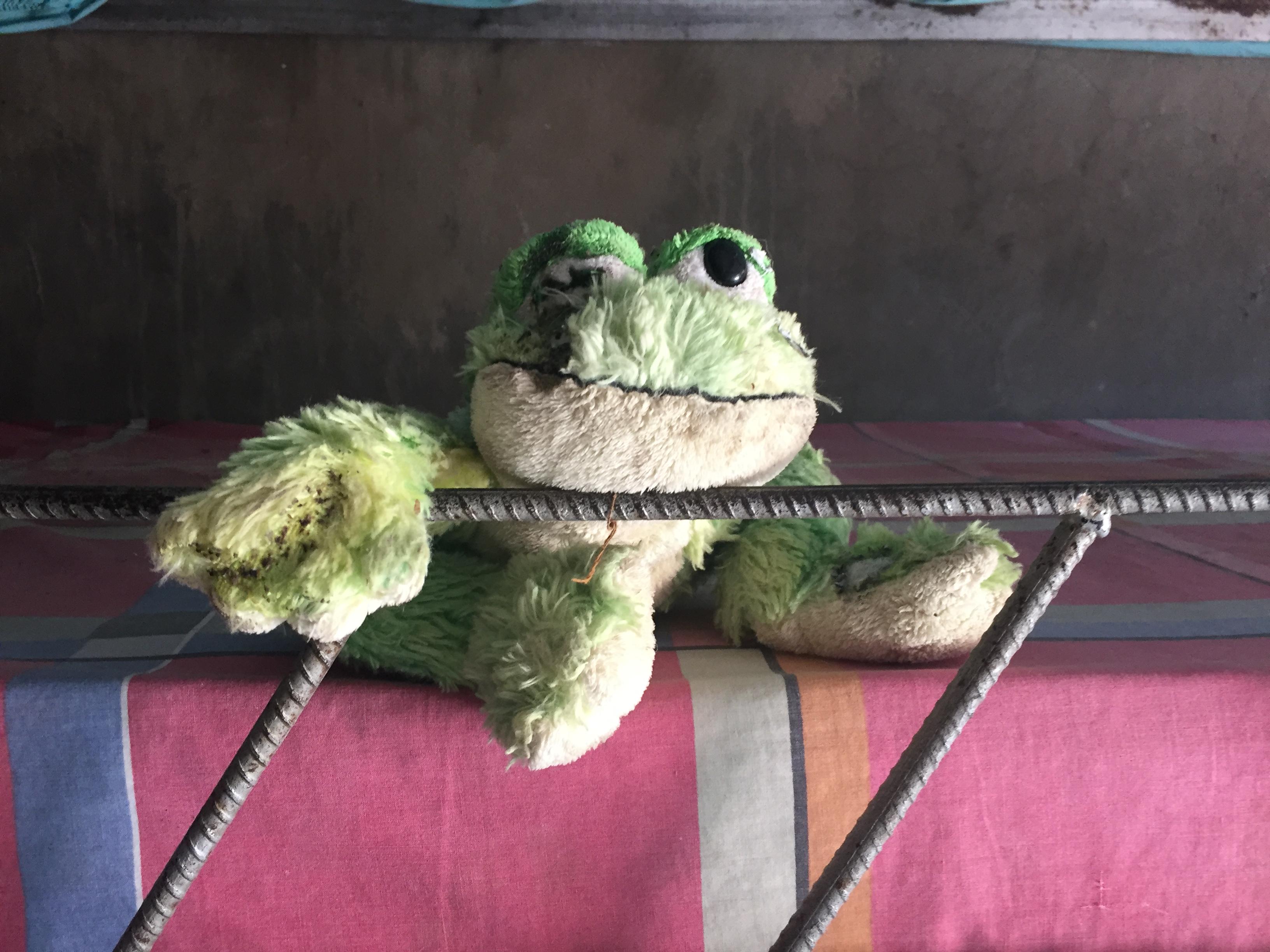 A Haitian orphan's stuffed frog
