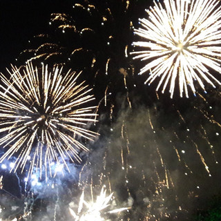 Noemi was the Project Manager & Artist Liaison, at Battersea Park Firework Display on behalf of Wandsworth Borough Council