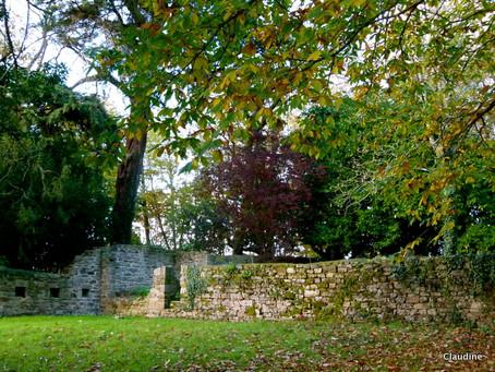 Flânerie botanique au parc du château du diable