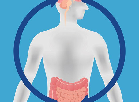 Gut Influences Brain and Behavior