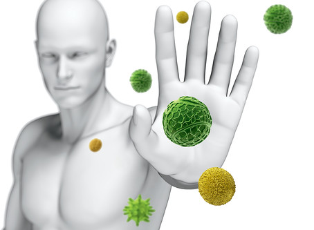 The importance of Vitamins, Minerals, Co-Factors and Lactobacillus in our immune system
