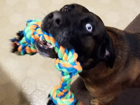So...I've got this rope