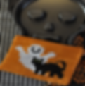 Ghost and Cat Hotpad patternpic1.png