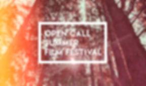 summer film festival open call 2.jpg
