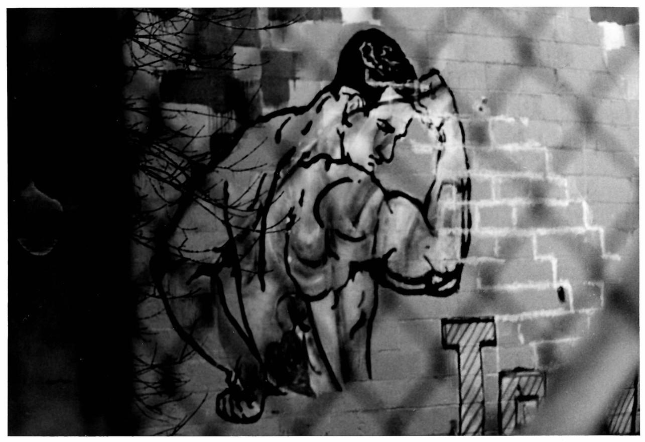 Muscle Guy Graffiti
