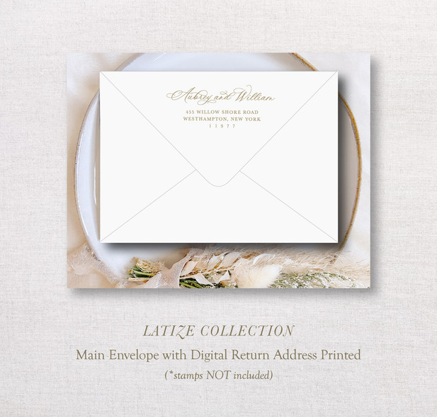 Latize Collection_ MainEnv.jpg