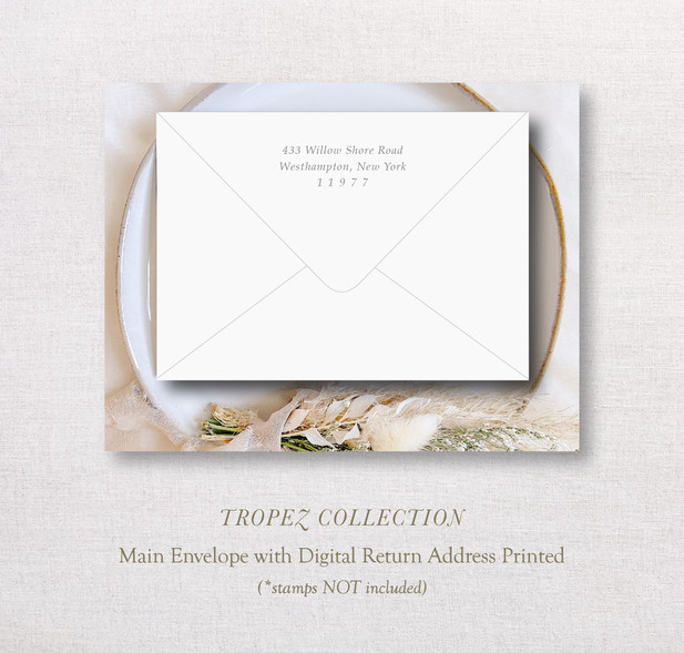 TropezCollection_ MainEnv.jpg
