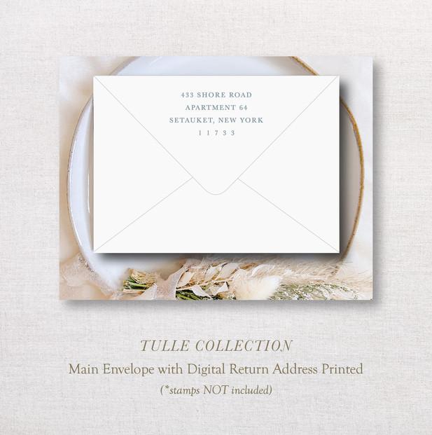 TulleCollection_ MainEnv.jpg