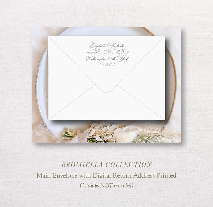 Bromiella Collection_ MainEnv.jpg