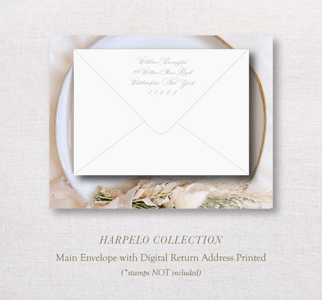 Harpelo Collection_ MainEnv.jpg