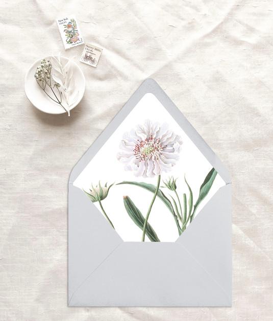 flora7.jpg