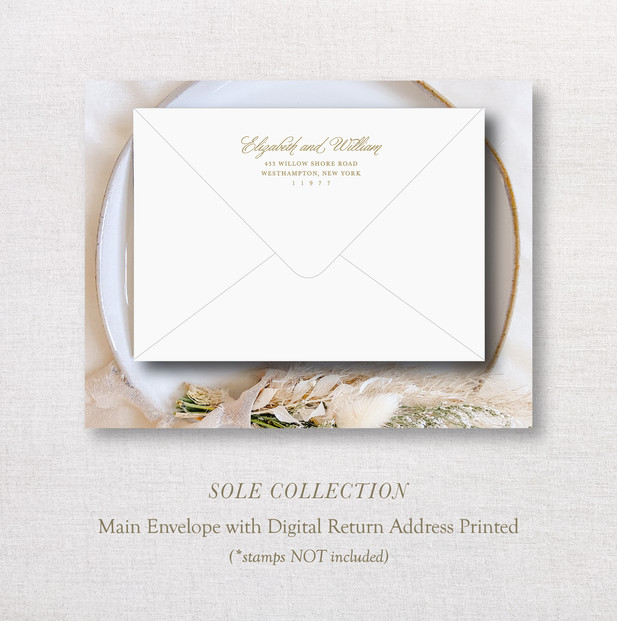 Sole Collection_ MainEnv.jpg