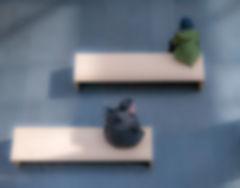 Bench Sitting copy.jpg
