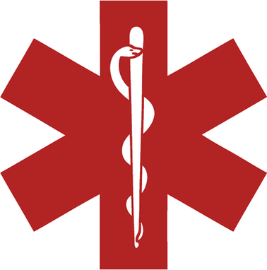 ems-1014x1024-1.png