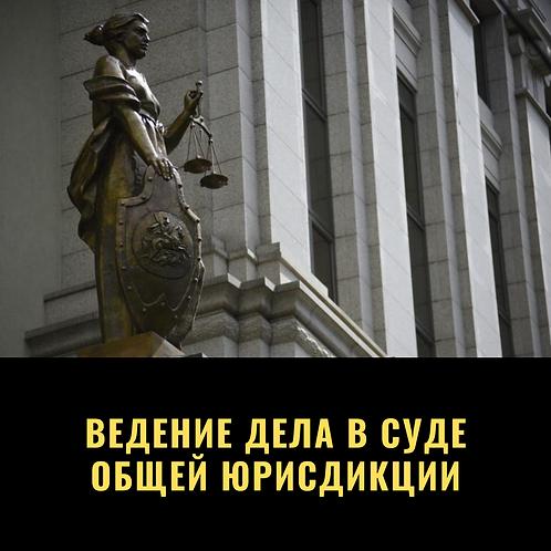 Ведение дела в суде общей юрисдикции
