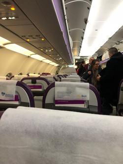 WOW Air Flight