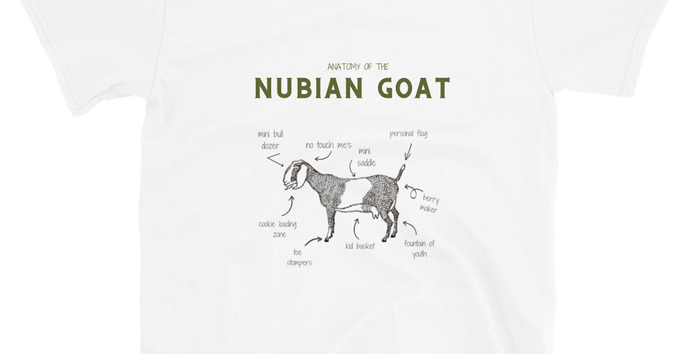 The anatomy of the Nubian Goat