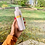Thumbnail: Bubbles + Honey Sugar Scrub