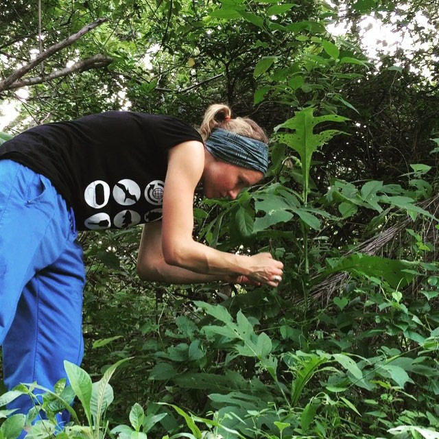 Plant Scientist Interview