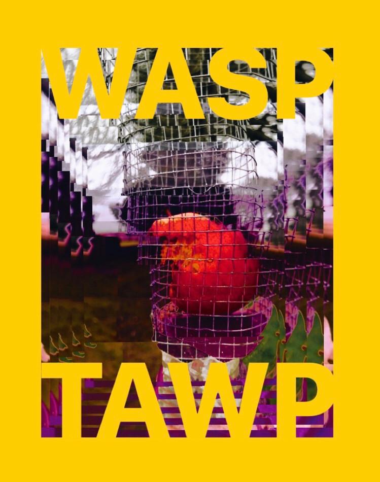 Tawps Art