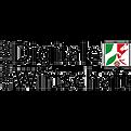 DWNRW Digitale Wirtschaft NRW Logo