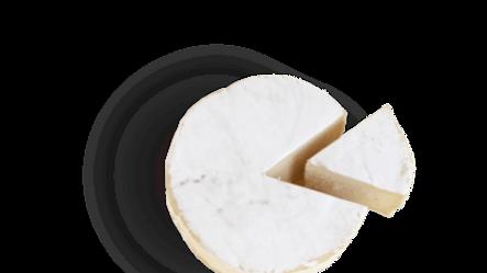 Vegan Cheese on Vegshelf